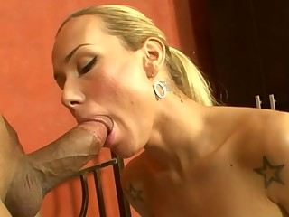 Anal fuck is organized by agile stud for a nasty shemale